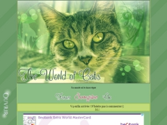Détails : The World Of Cats