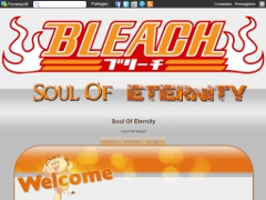 Détails : Bleach Soul Of Eternity